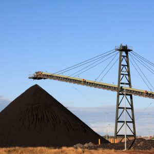 Members decline Coal Services proposal